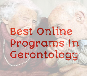 best online gerontology programs