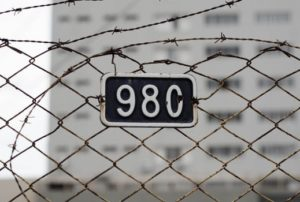 illegal watson 853