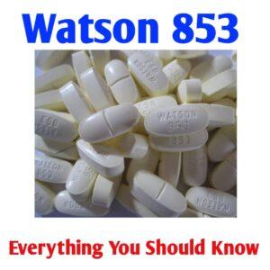 watson 853