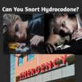 can you snort hydrocodone?