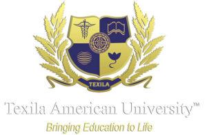 Texila Online University in Nigeria