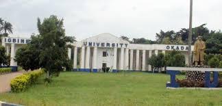 School of Nursing Igbinedion University