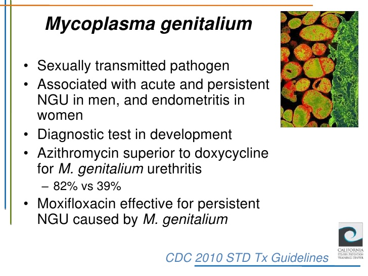 Is Mycoplasma Genitalium An STD?