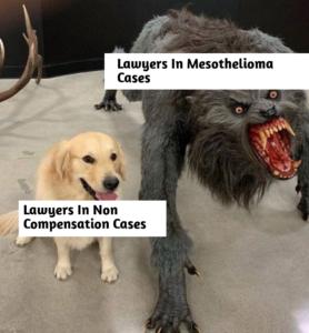 mesotheliomamemes