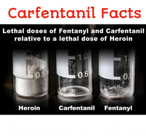 Carfentanil