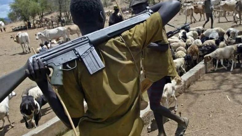fulani hermen weapons