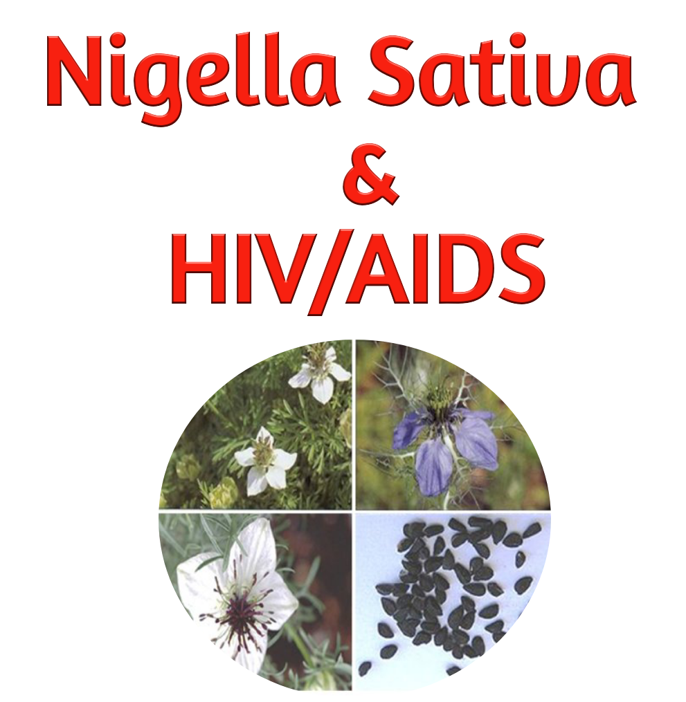 Nigella sativa HIV treatment