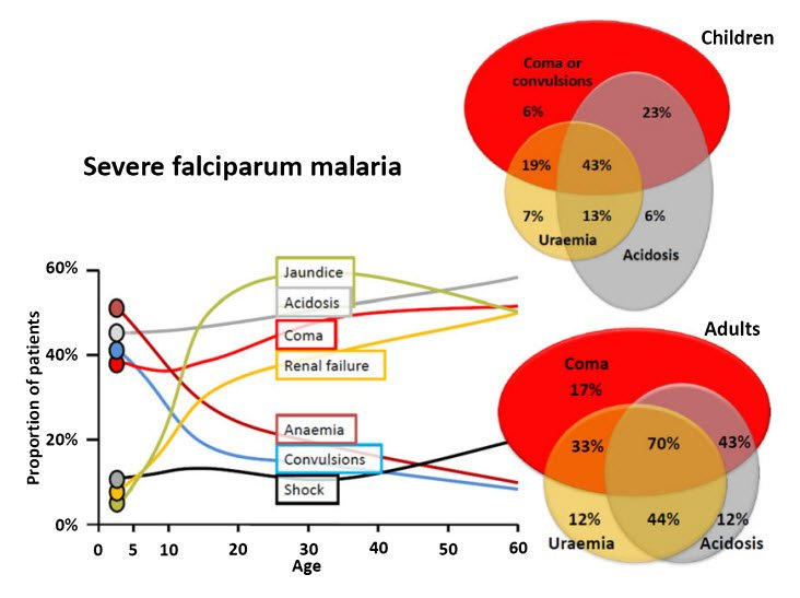 WHO definition of  Severe malaria