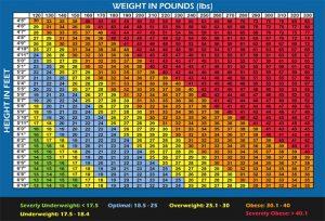 bmi vs body fat chart