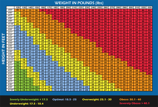 bmi vs body fat chart