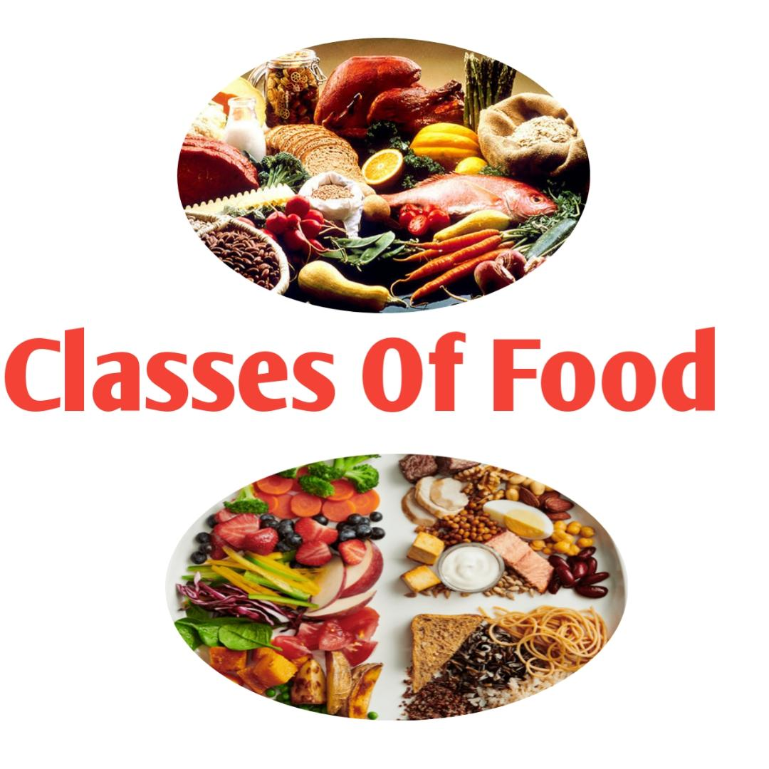 7 classes of food and their functions