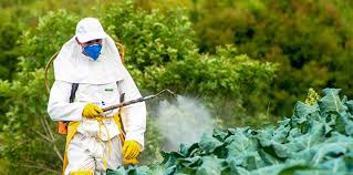 How to Use Pesticides Safely