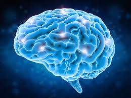 Effects of Rohypnol on the Brain