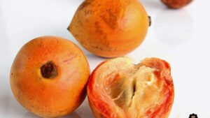 Health Benefits and Side Effects Of Agbalumo