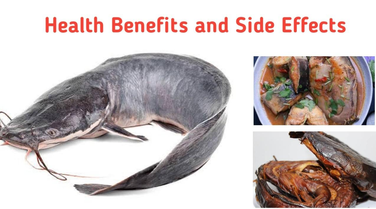 Health Benefits and Side Effects of Catfish