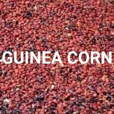 Health Benefits and Side Effects of Guinea corn