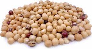 bambara beans