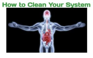 How to Clean Your System