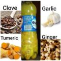 health benefits of ginger garlic turmeric and cloves