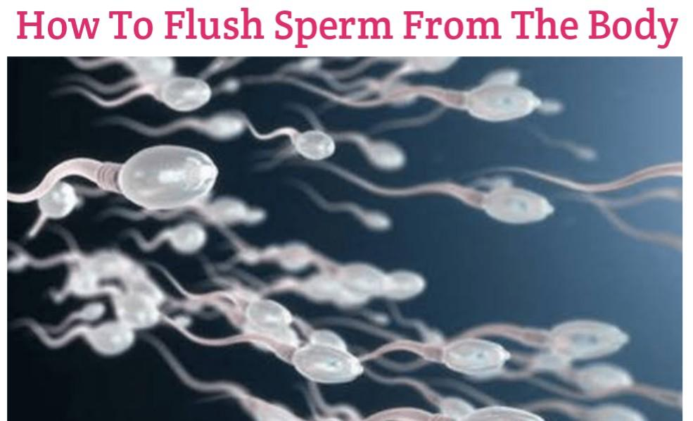 How To Flush Out Sperm From The Body Naturally