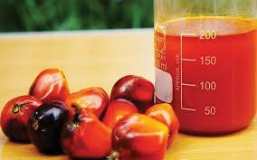 How To Identify Good Palm Oil vs Fake