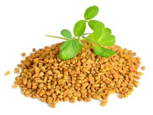 How To Use Fenugreek For Breast Enlargement