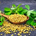 How to Use Fenugreek for Diabetes