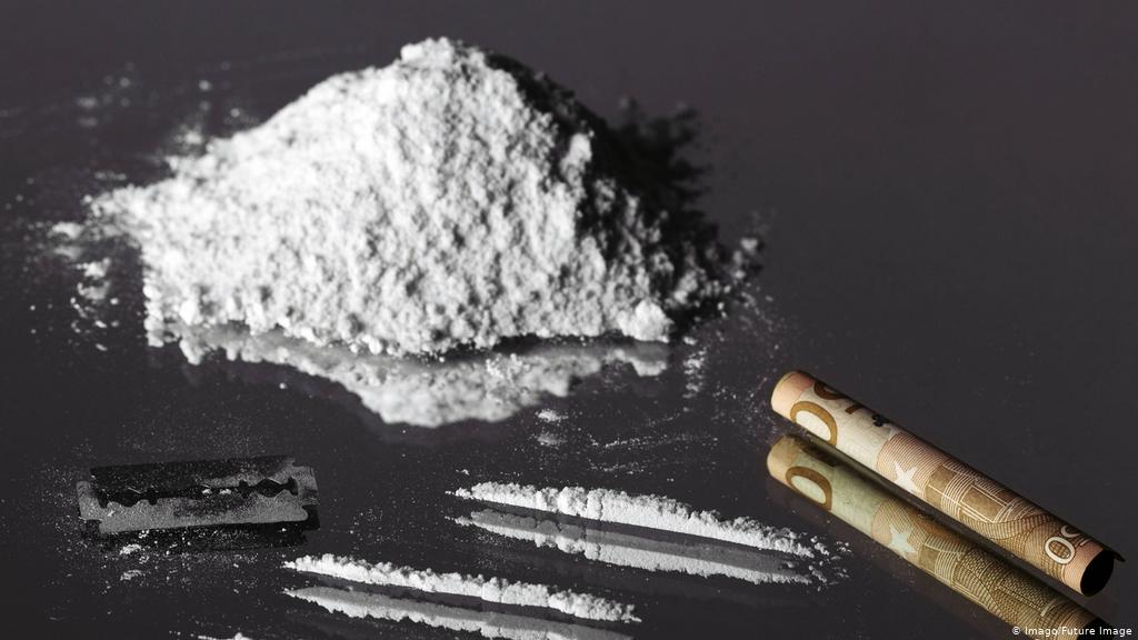 What Plant Does Cocaine Come From