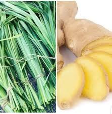 Benefits Of Lemongrass And Ginger Tea