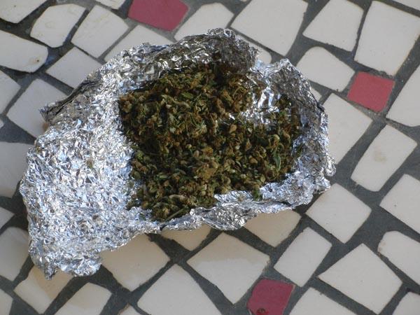 Fake Weed Plant