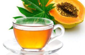 Pawpaw Leaf tea For Diabetes