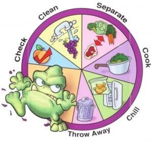 Why Is Food Safety and Sanitation Important