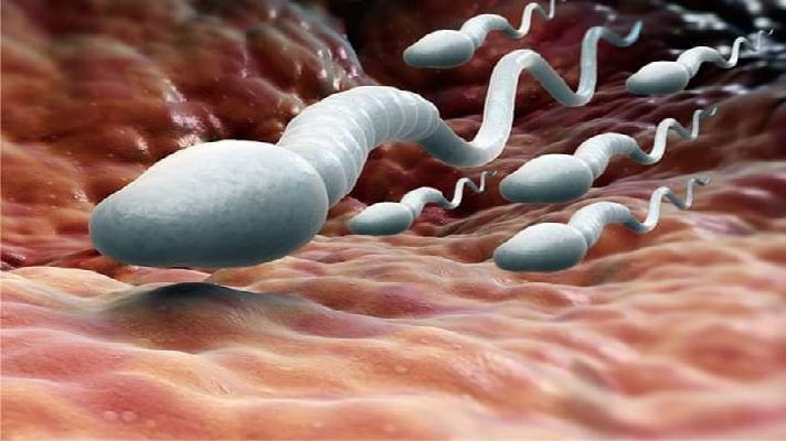How To Get Sperm Out Of Your Body Fast