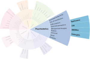types of psychedelics