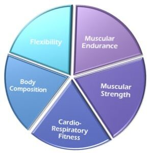 What Are The 5 Components Of Health Related Fitness