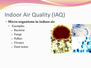 Biological Contamination of Indoor Air Quality