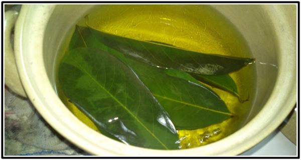 Mango Leaves For Fertility