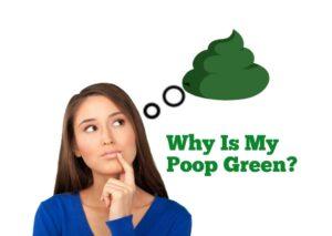 Why is my poop green