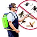 Advantages of Pest Control