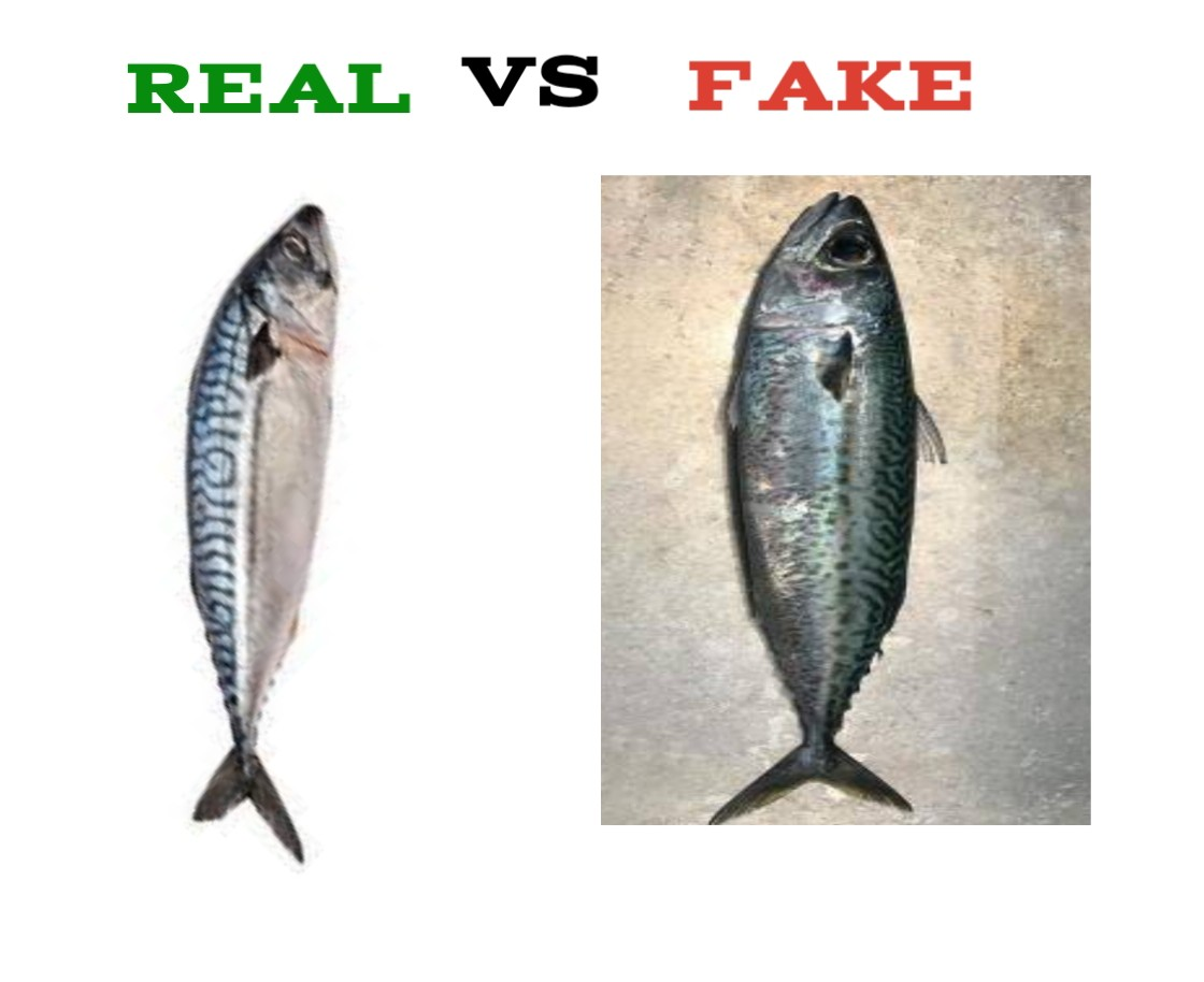 How To Identify Fake Titus Fish